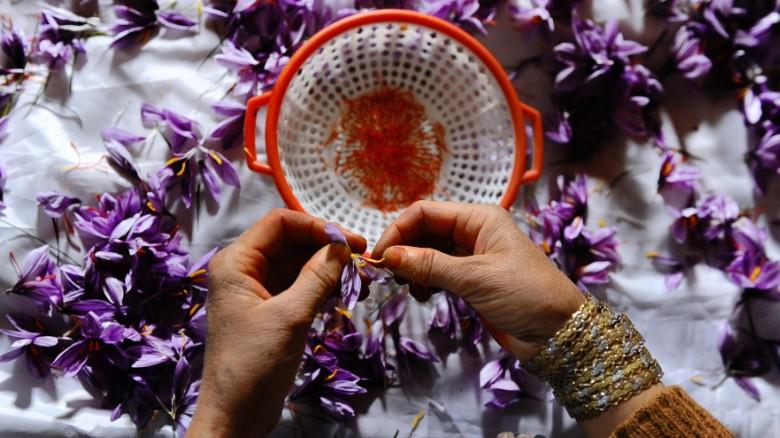 nhụy hoa nghệ tây có thực sự tốt như đồn thổi? ELLE Việt Nam