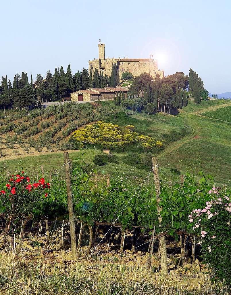 Tiệc tối lãng mạn kiểu Ý cùng Castello Banfi 8