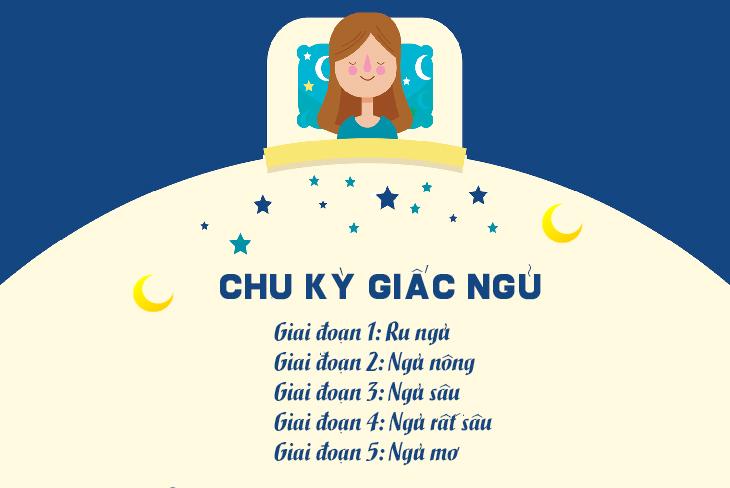 11 sự thật về giấc ngủ
