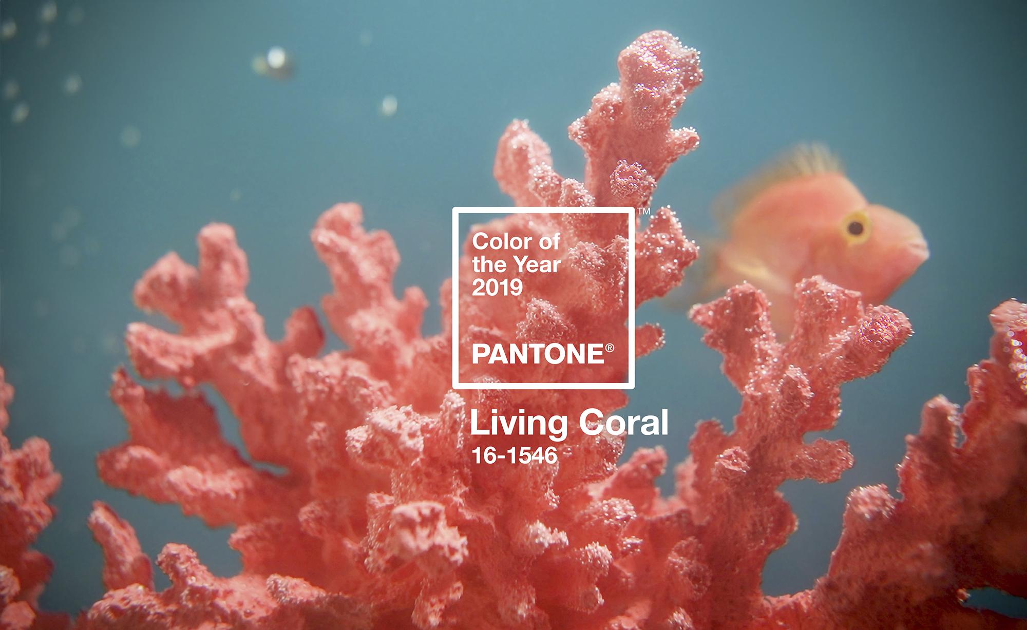 Living coral – màu cam san hô