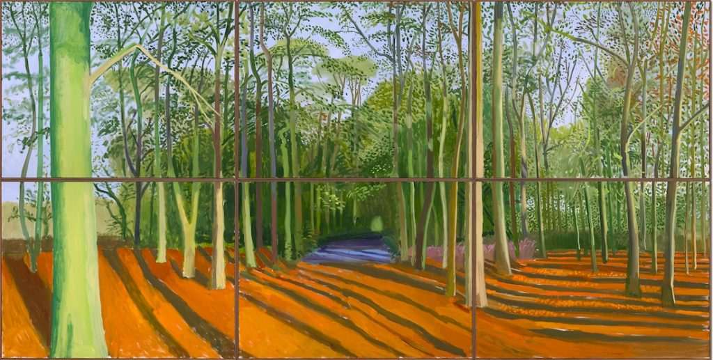 Tranh vẽ của David Hockney 8