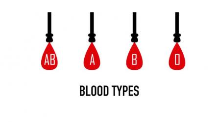 20 điều thú vị về nhóm máu trong cơ thể khiến bạn không khỏi bất ngờ