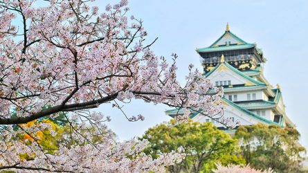 Biết 15 lý do sau đây, bạn chắc chắn sẽ muốn đến Nhật Bản dịp Tết này