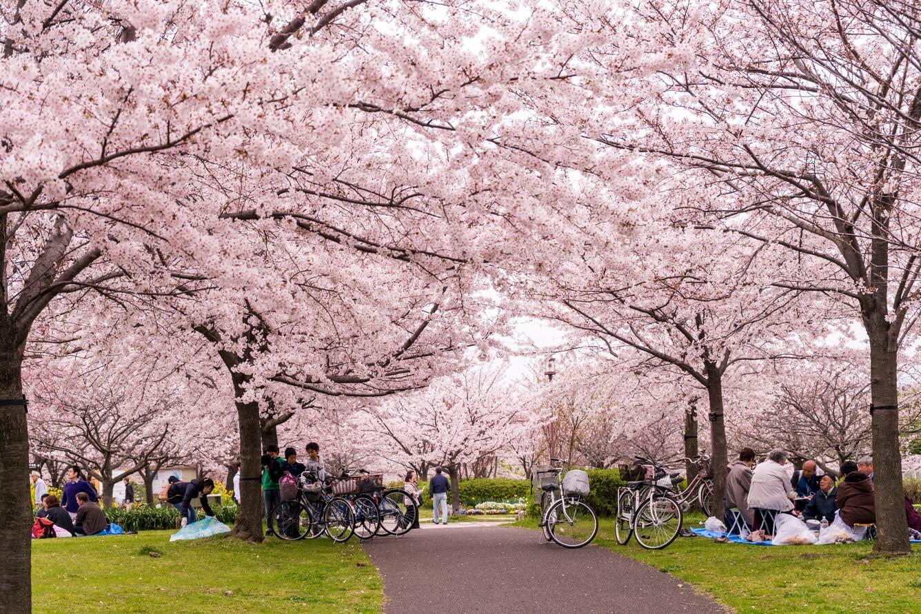 Điểm đến du lịch mùa Xuân 9