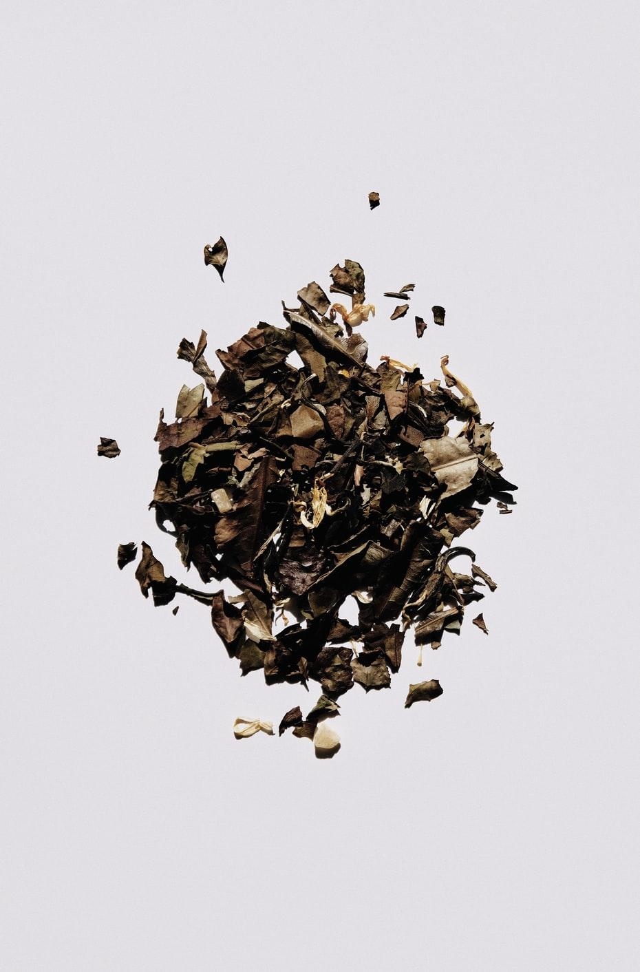 tác dụng của trà trắng với sức khoẻ