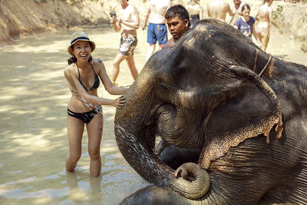 cô gái chơi đùa cùng voi