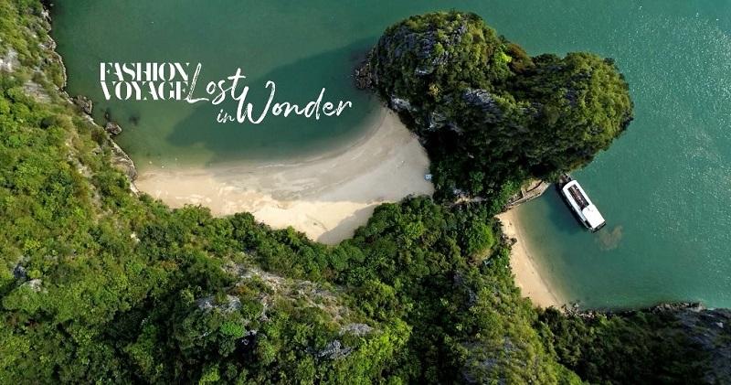 biển và cây - The Fashion Voyage