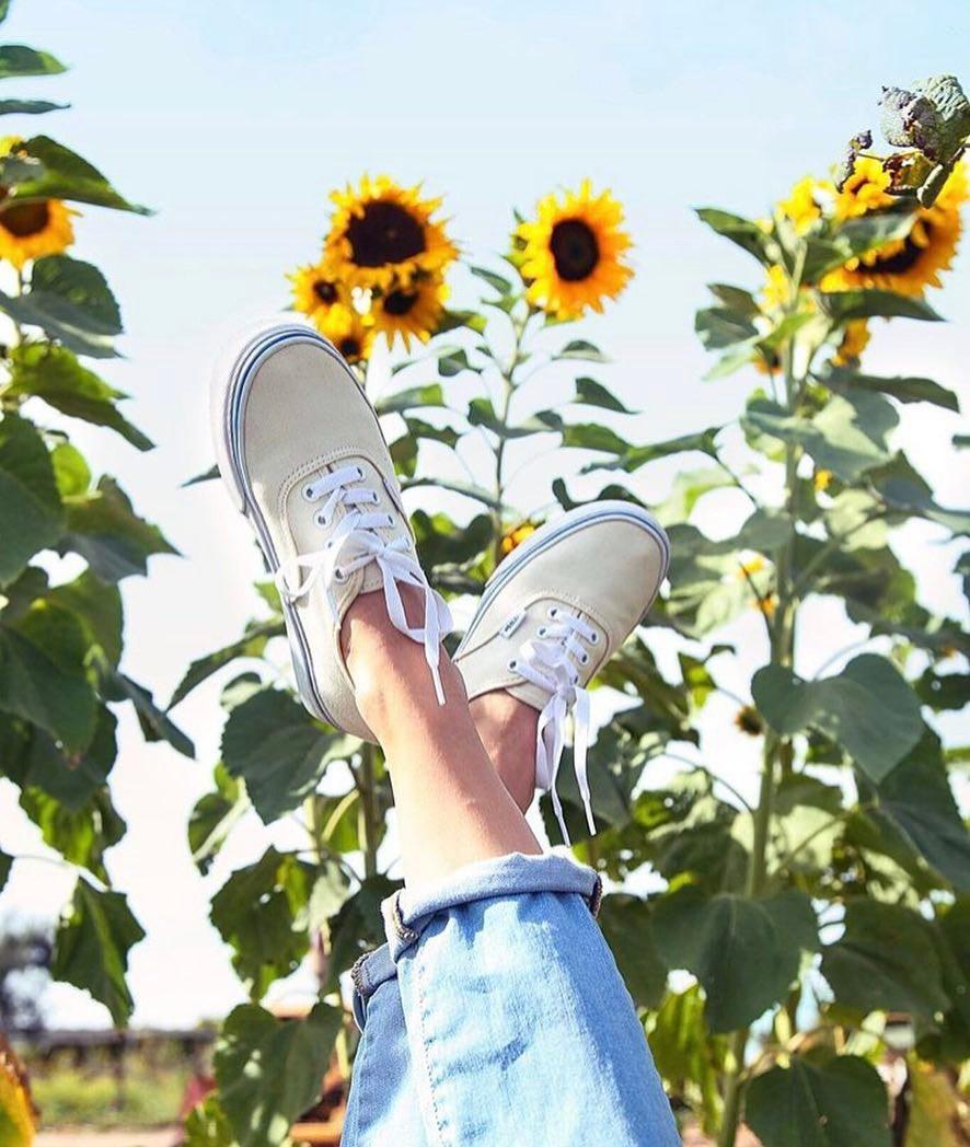giày sneakers kinh điển vans màu kem