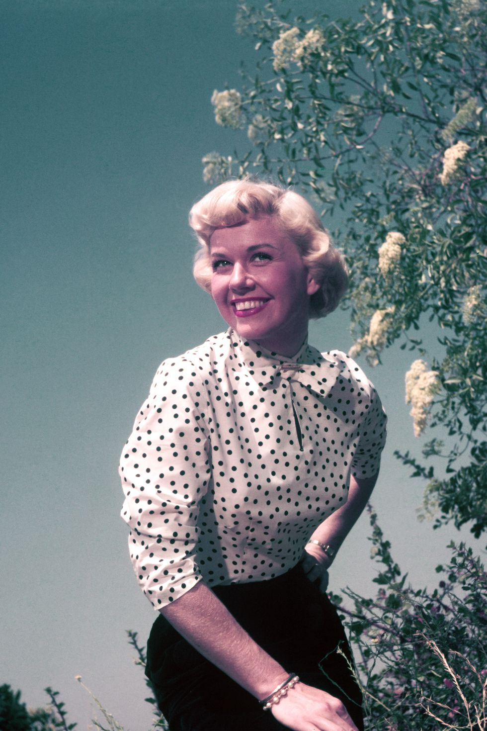 Doris Day (10)