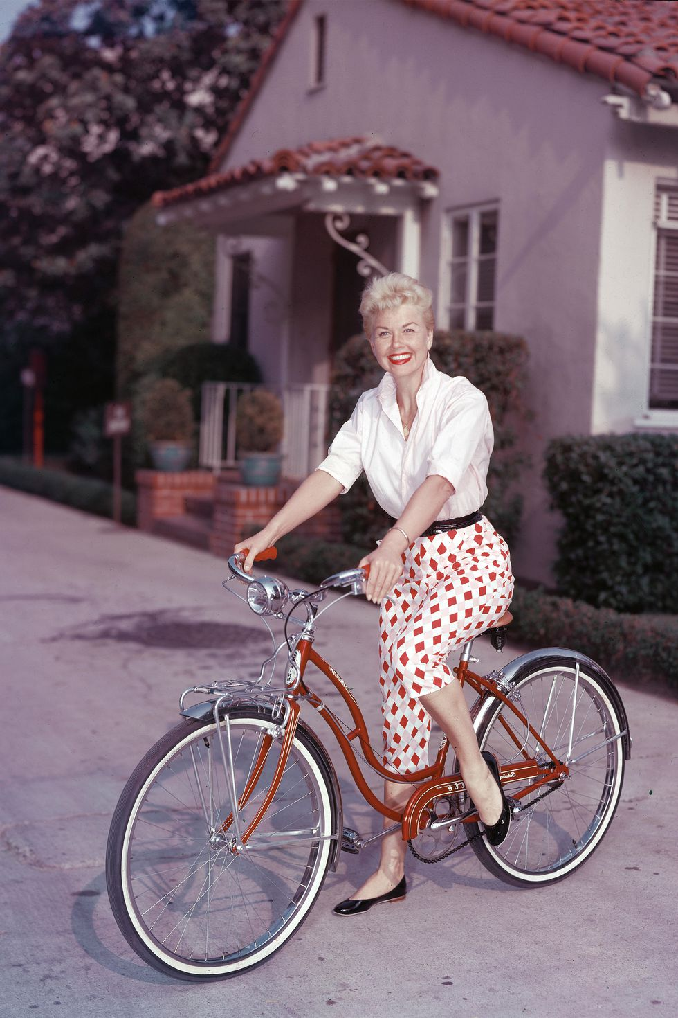 Doris Day (6)