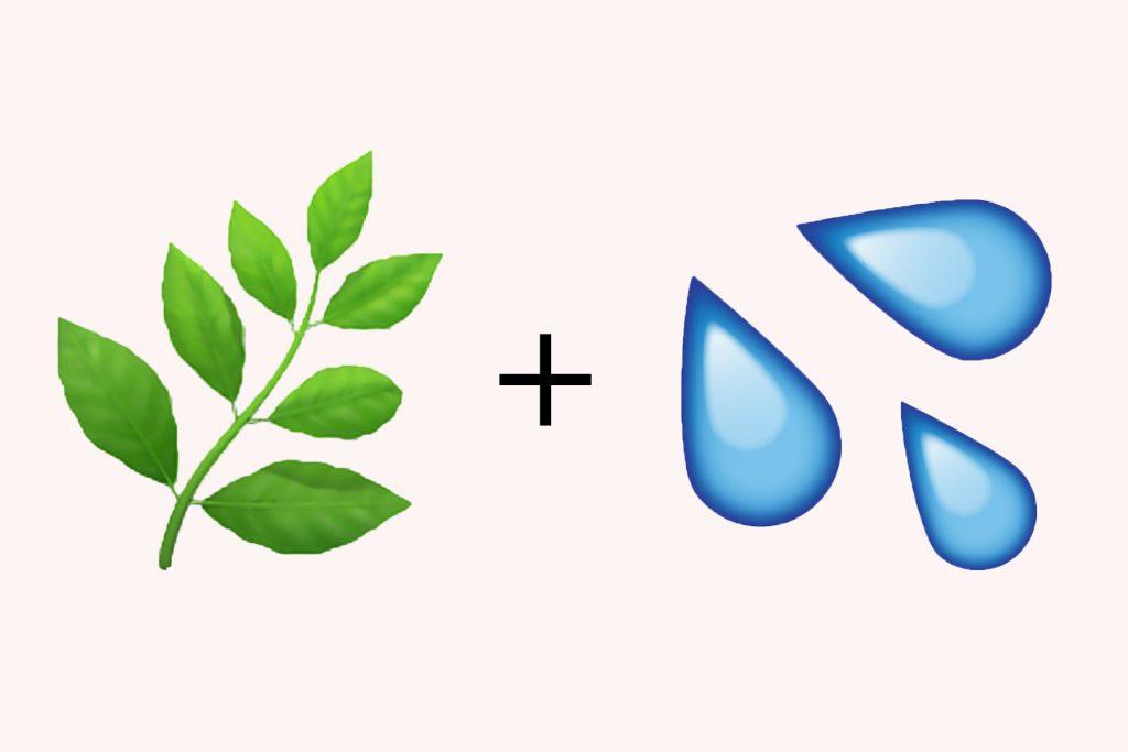 nguyên tố đất và nước
