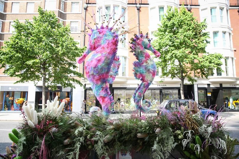 Mô hình đôi cá ngựa bằng hoa trên Sloane Street