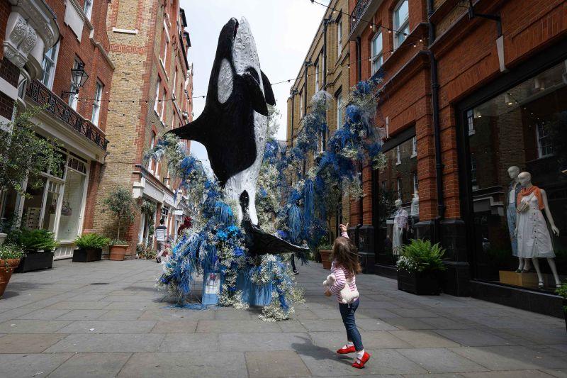 Mô hình cá voi Orca kích thước thật bằng hoa, London