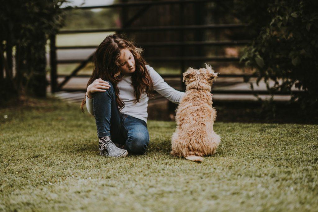 cô bé với chú chó