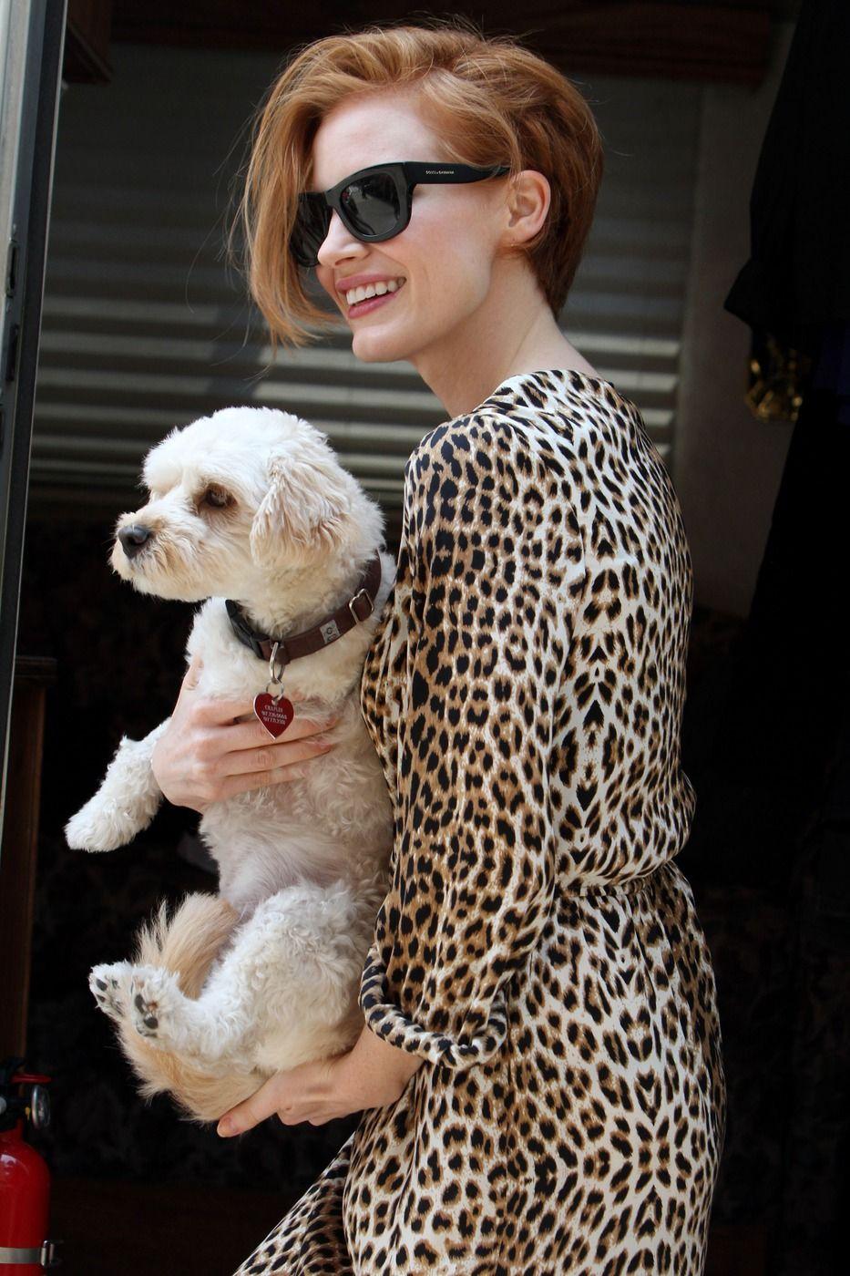 Jessica Chastain ôm chó cưng đi dạo trên đường phố New York với chiếc đầm họa tiết da động vật và kính mát đen