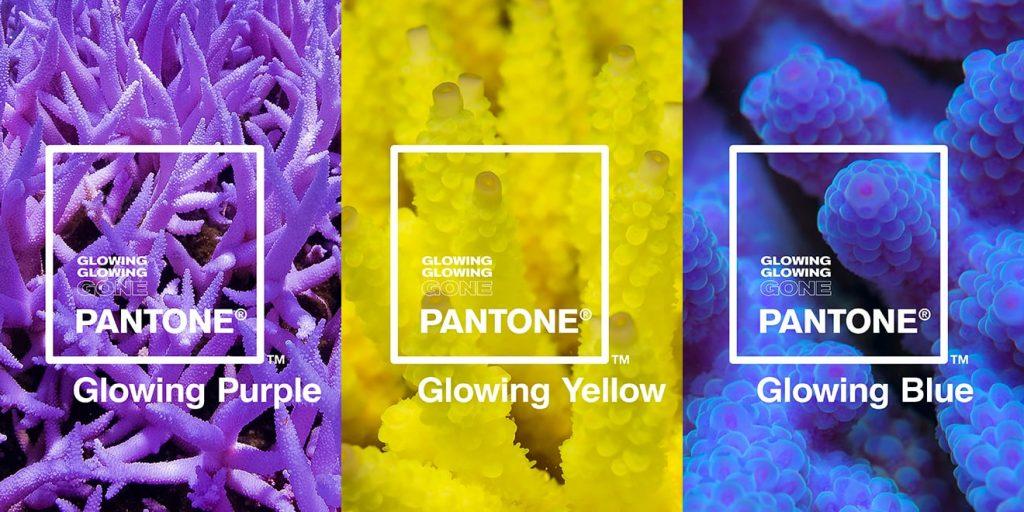 pantone glowing coral