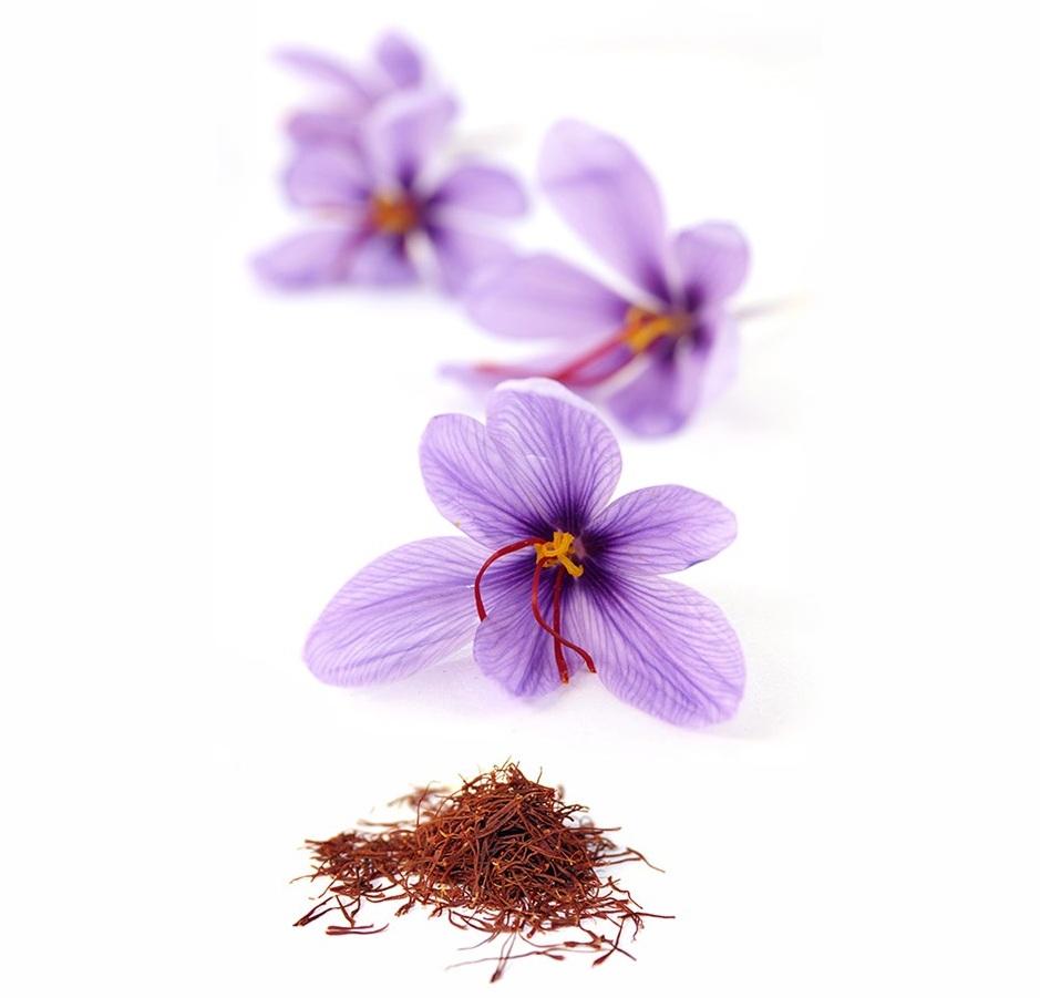 nhụy hoa nghệ tây 04