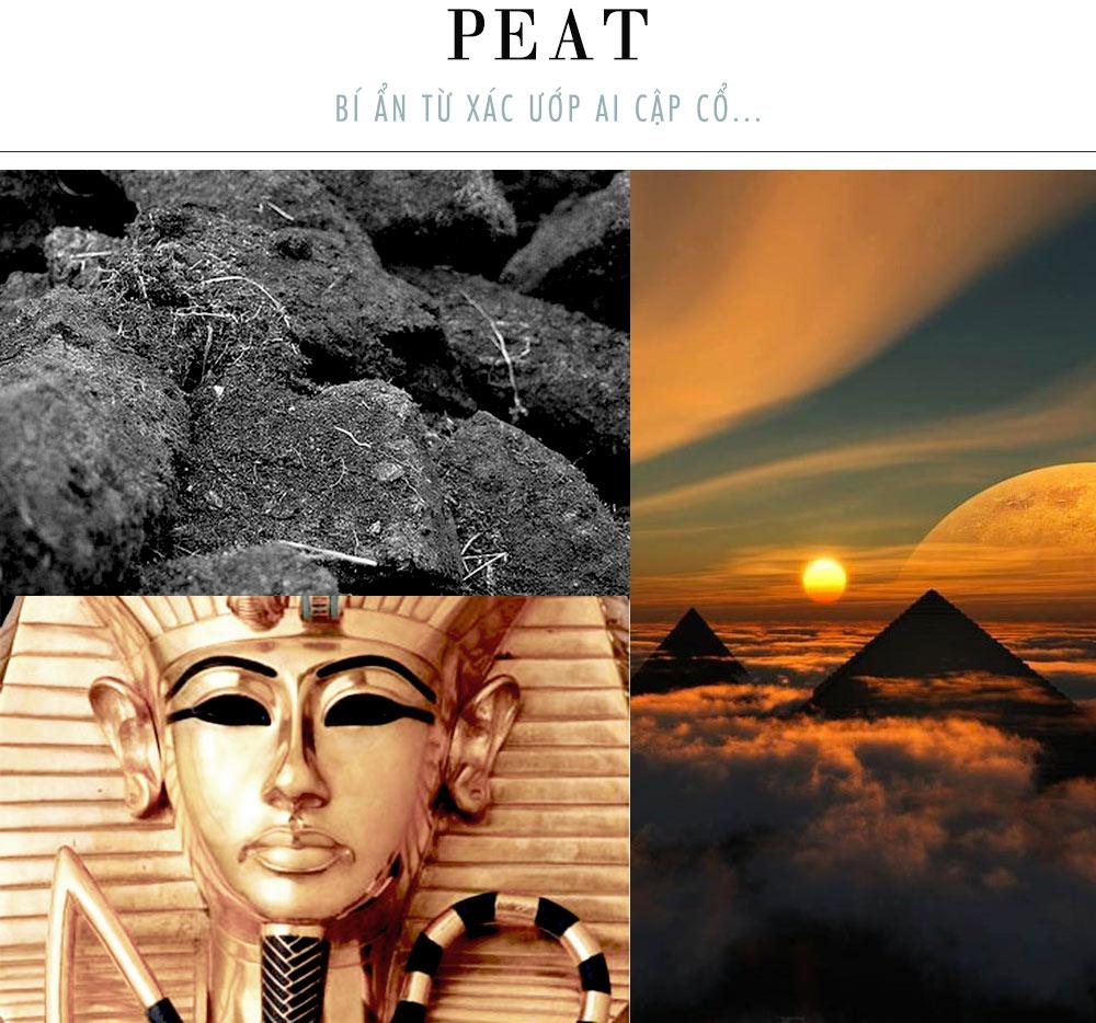 than hoạt tính - thành phần Peat từ Ai Cập
