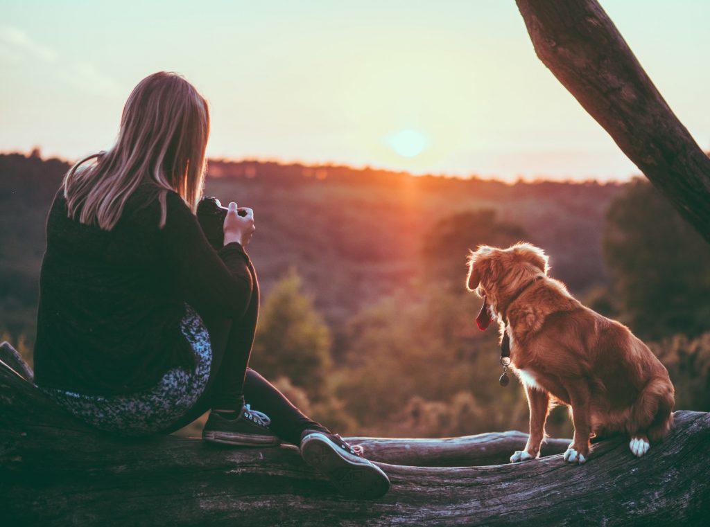 cô gái và chú chó ngắm hoàng hôn