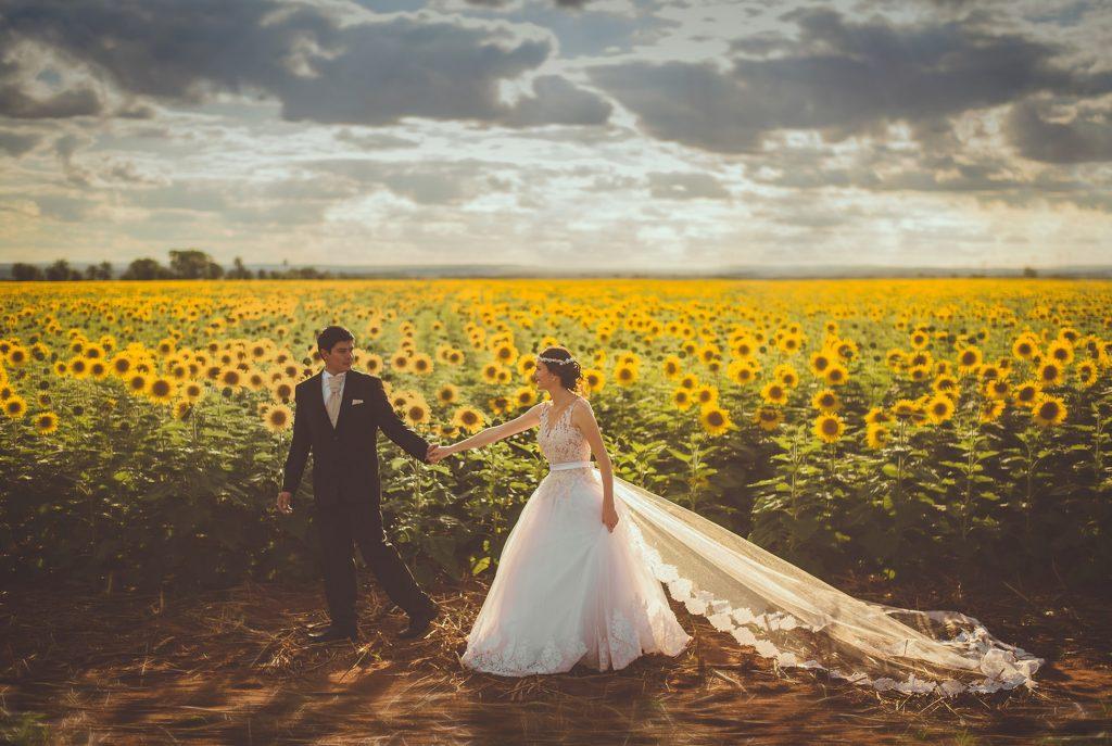 hình cưới ở cánh đồng hướng dương