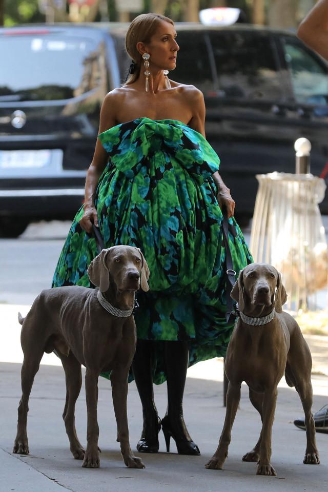 Céline Dion diện chiếc váy rộng thùng thình cùng hai chú chó đến Paris Couture Week