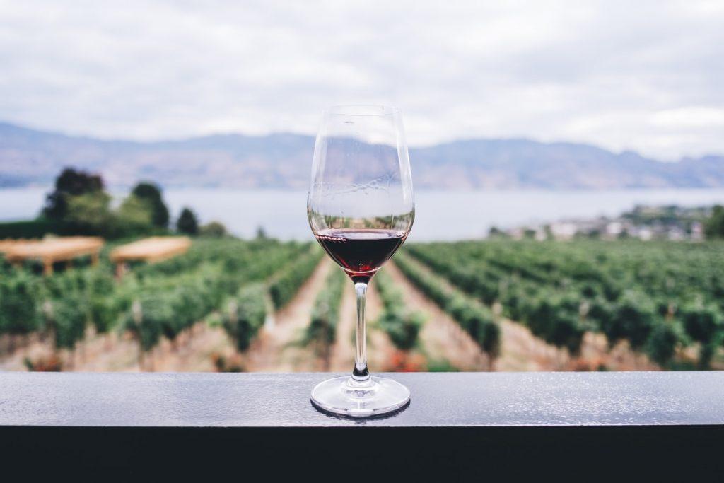 rượu trị kích ứng