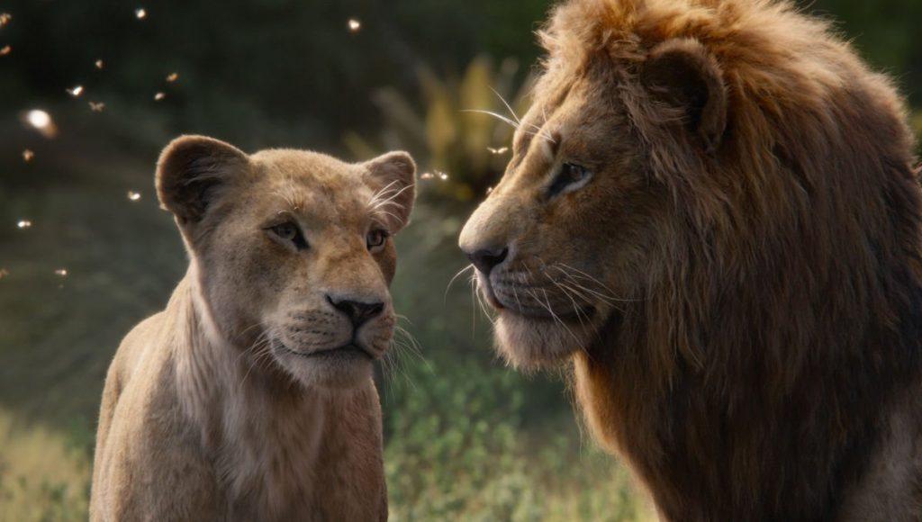 thiên nhiên vua sư tử 05