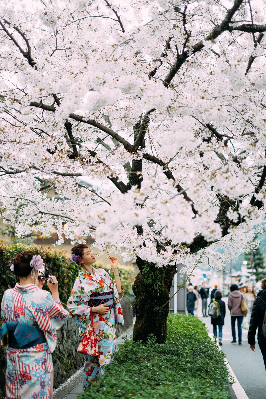 Cách làm đẹp của phụ nữ Nhật Bản được bảo dưỡng qua nhiều thế hệ chứ không phải chỉ nổi lên như một trào lưu ngắn ngủi. Ảnh: Unsplash.