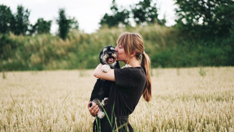 cô gái ôm chú chó trên cánh đồng