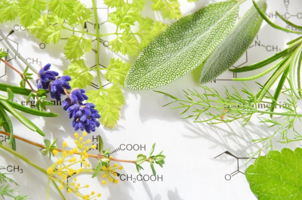 thành phần mỹ phẩm từ thực vật