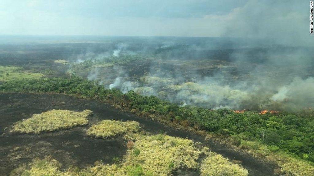 rừng amazon đang cháy