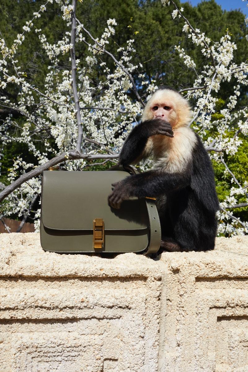 Chiến dịch quảng cáo Thu Đông 2019 khỉ Allie
