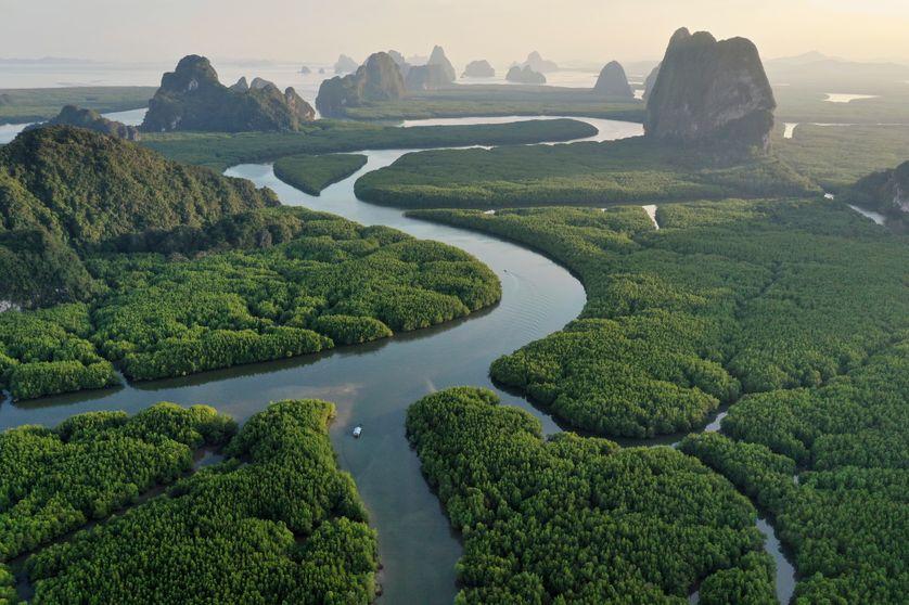 điểm tin thời trang - LVMH đóng góp 10 triệu euros cho cháy rừng Amazon