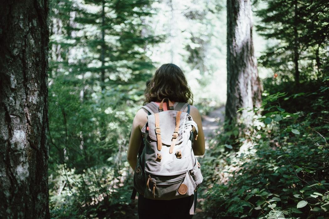 cô gái vào rừng