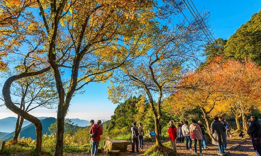 du lịch Đài Loan mùa Thu ở Alishan