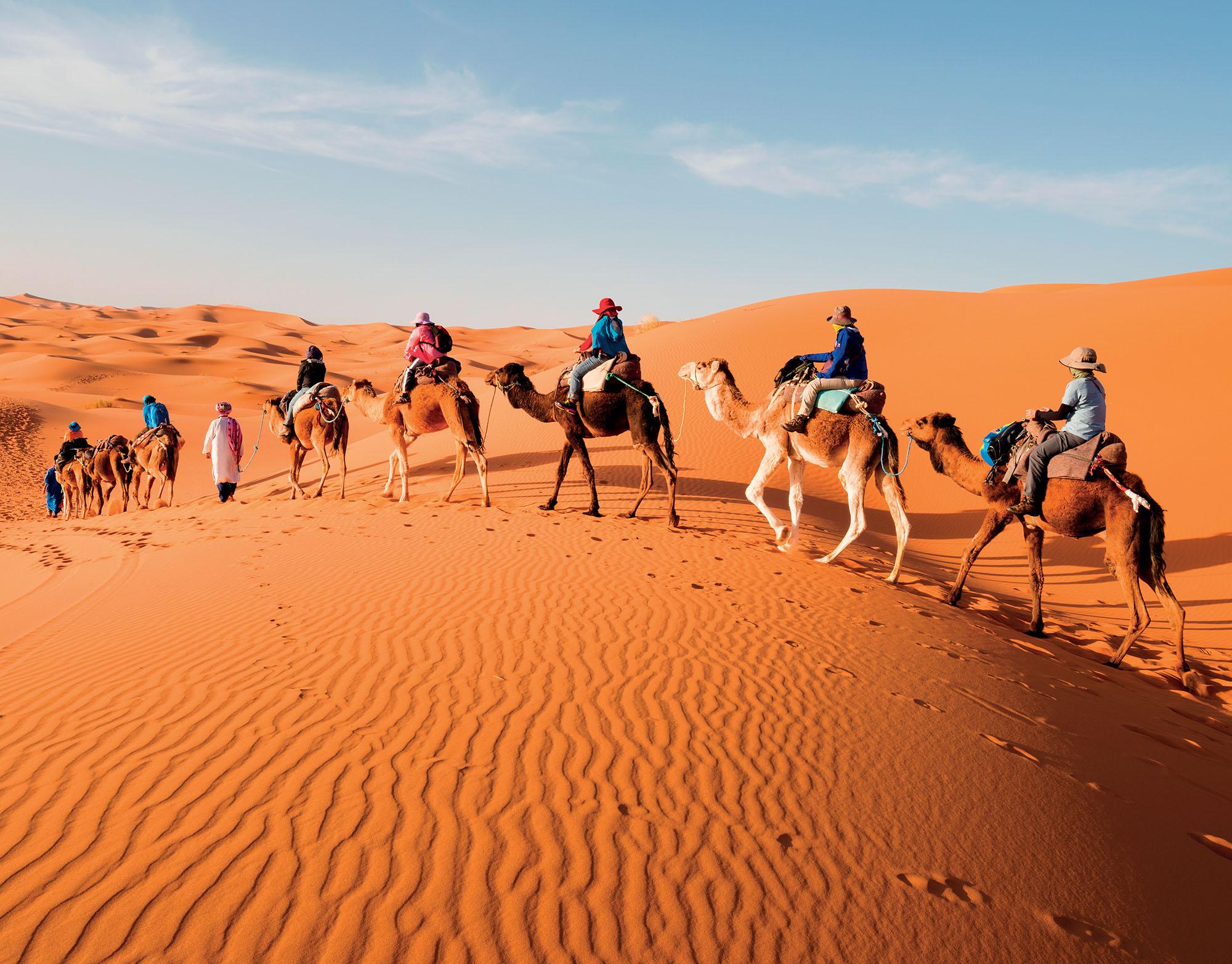 Morocco du lịch người dân cưỡi lạc đà