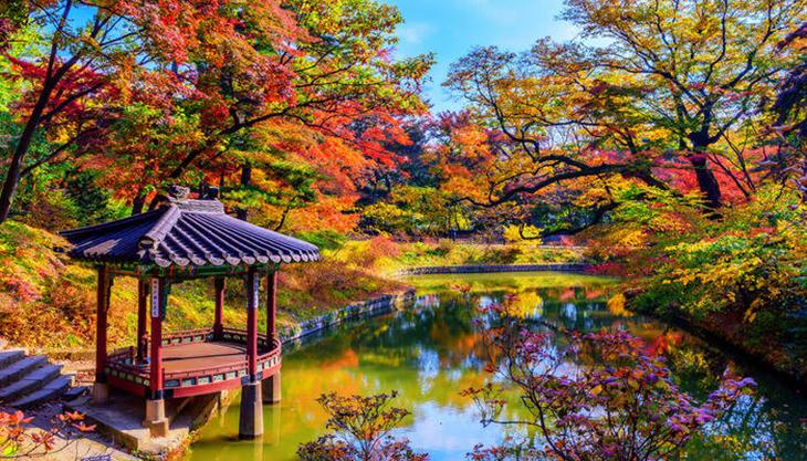 cung Changdeokgung mùa thu