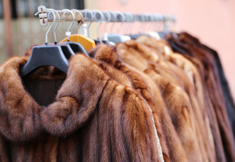 áo lông thú