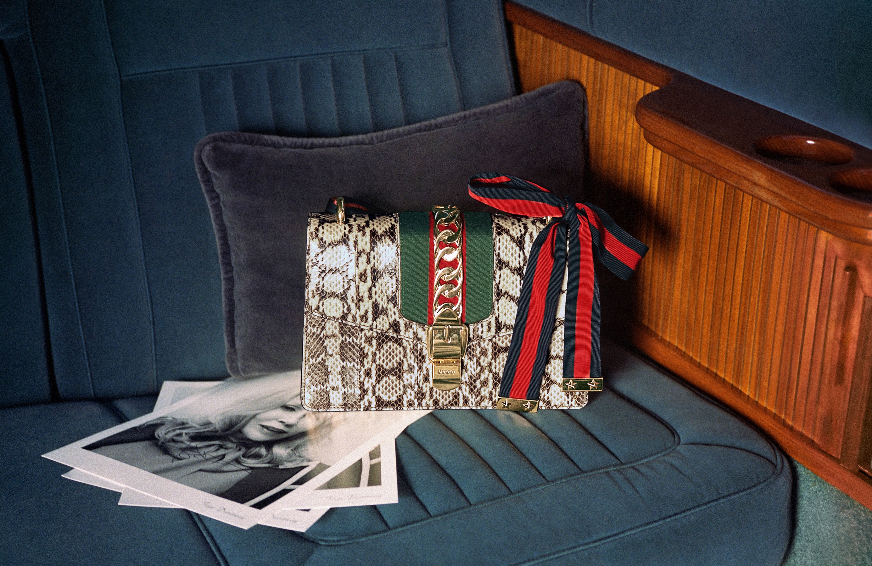 cách bảo quản túi xách hoạ tiết da rắn - gucci