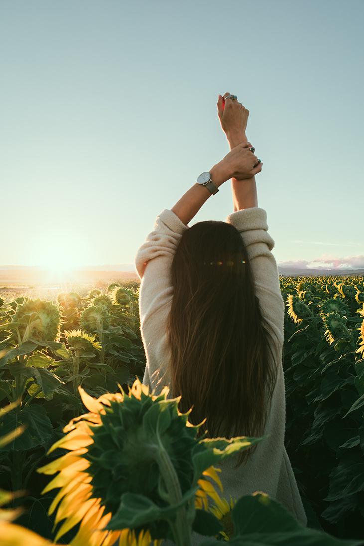 thức uống giảm triệu chứng pms cô gái đứng kế hoa hướng dương quay lưng