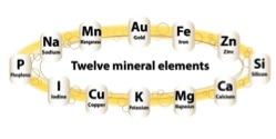 diofons thành phần hoá học