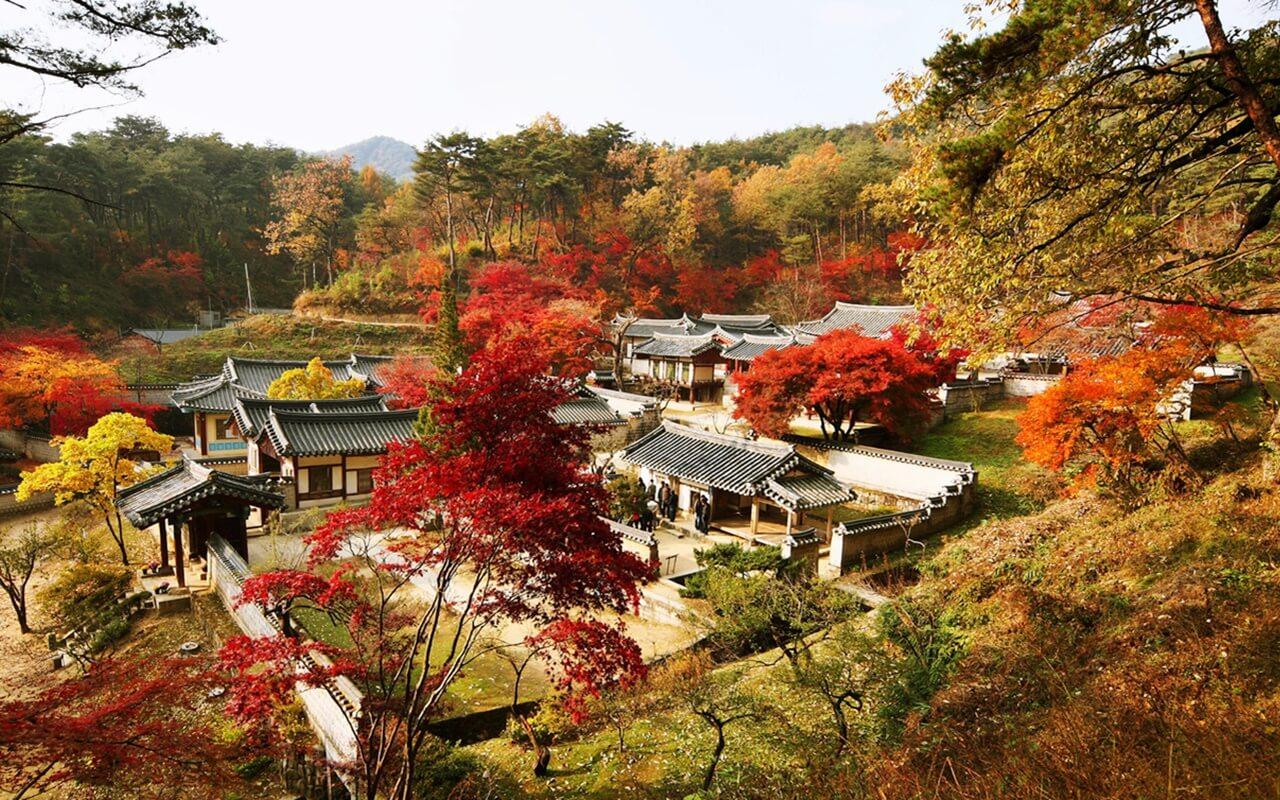 hệ thống thư viện cổ seowon hàn quốc