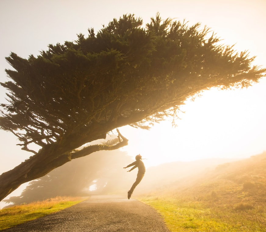 một người nhảy bật dưới tán cây