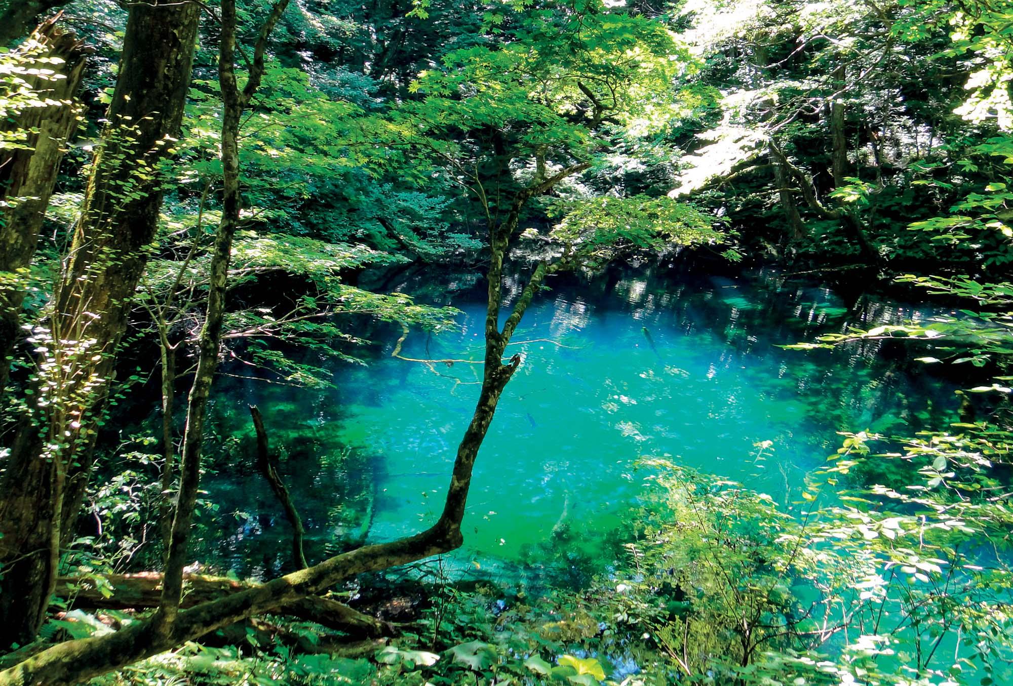 địa điểm Nhật Bản Tohoku