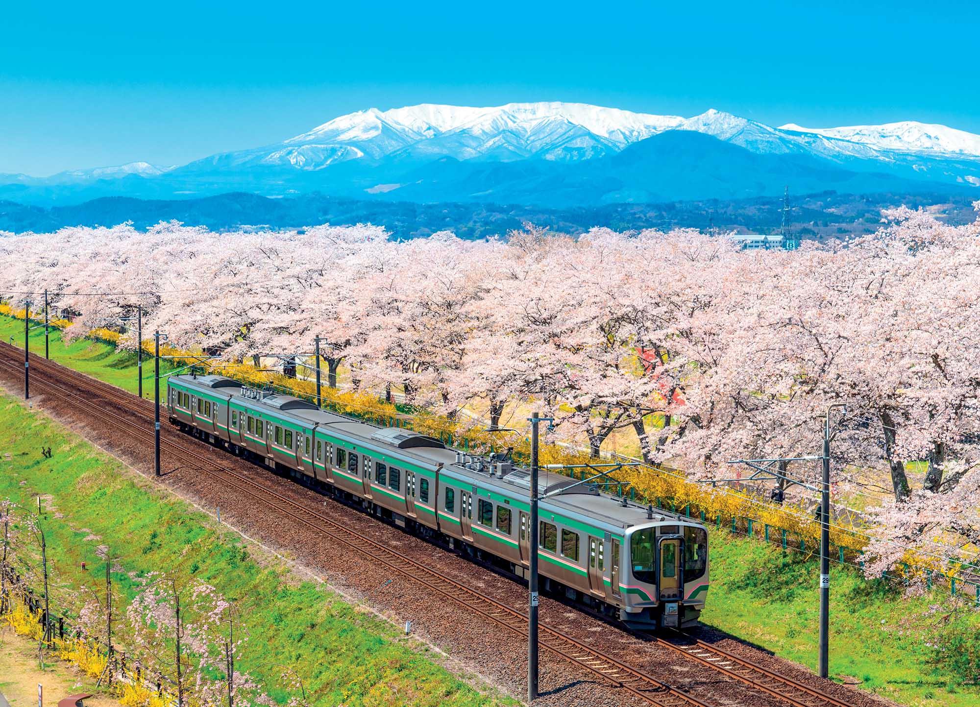địa điểm đường ray xe lửa và hoa anh đào