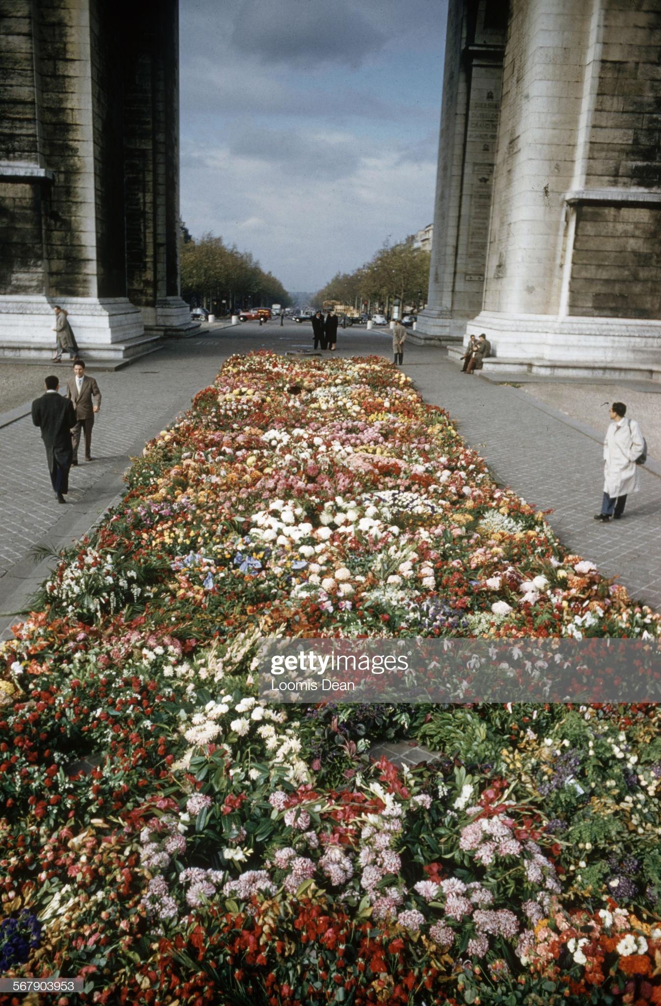 hoa tại đám tang của christian dior