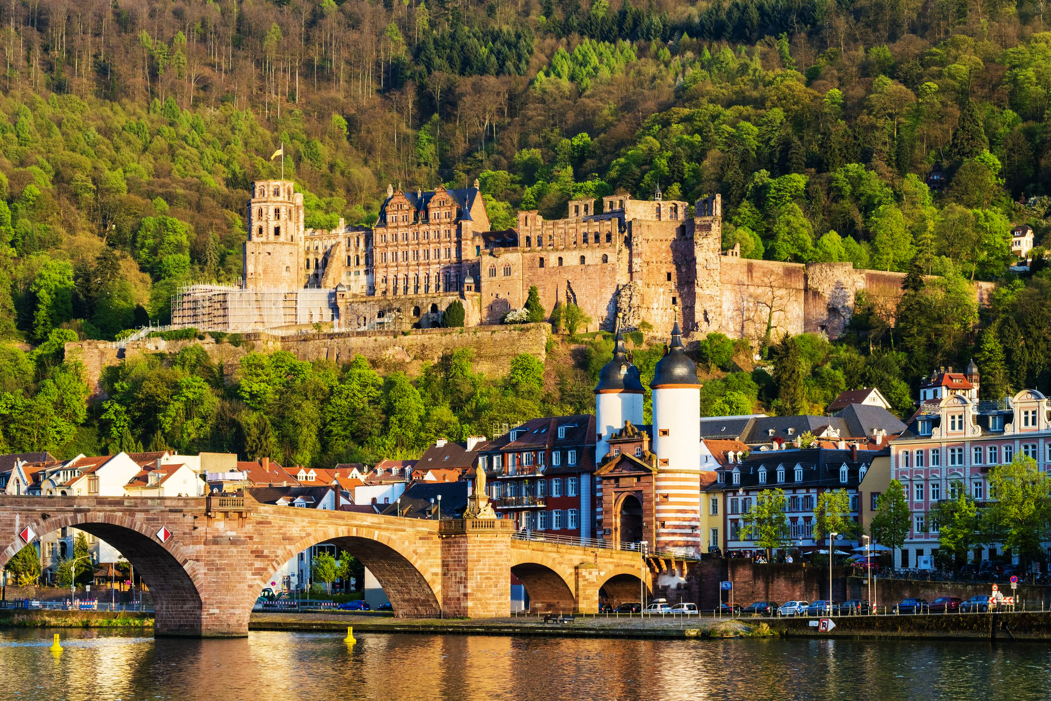Heidelberg castle Đức