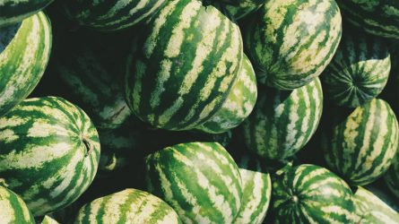 Những loại trái cây ngon miệng lại giúp giảm cân