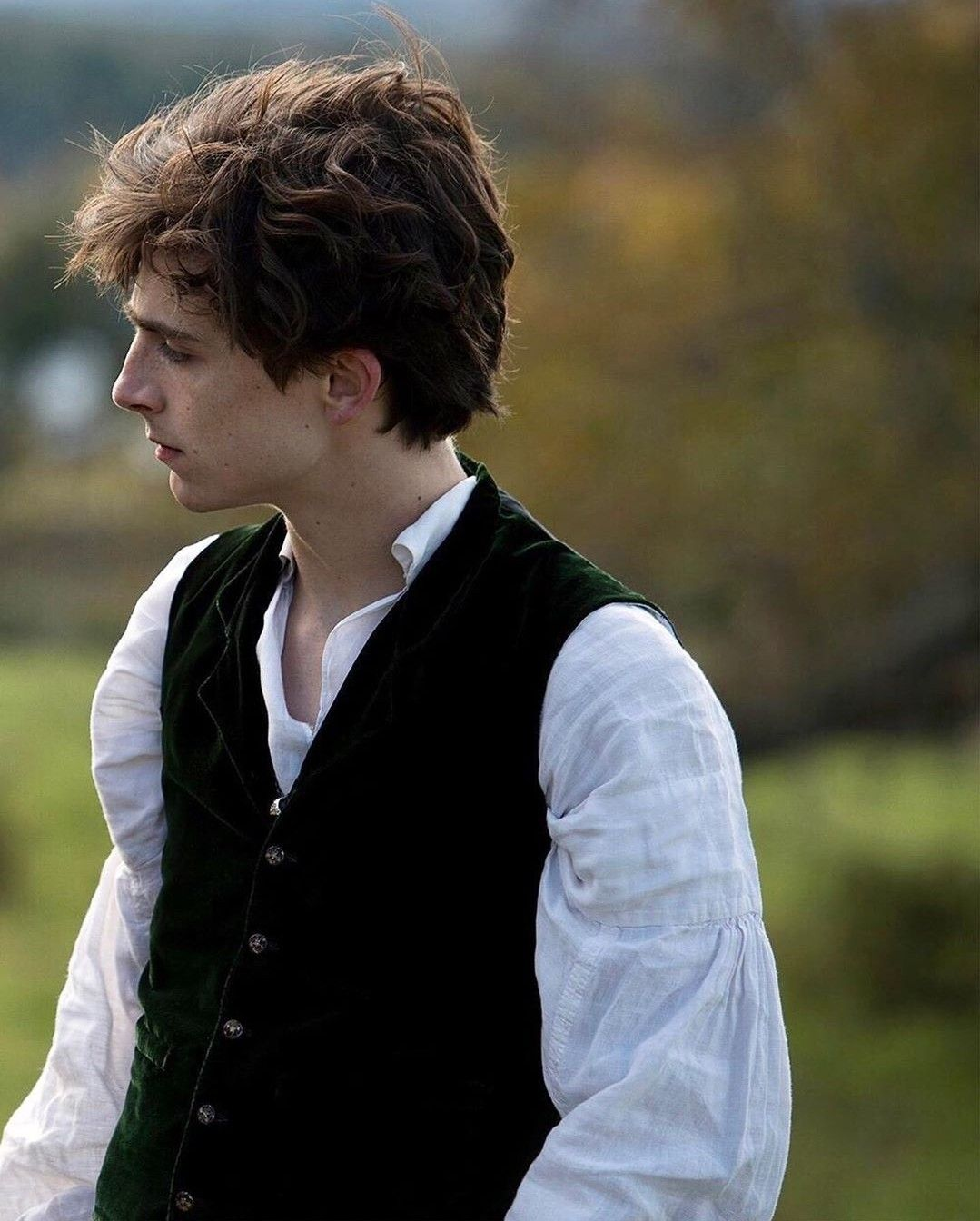 Laurie do Timothee Chalamet thủ vai trong Little Women