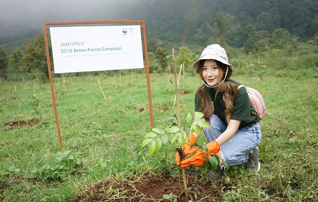 Chiến dịch Green Forest của innisfree
